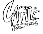 Carte Electric LLC